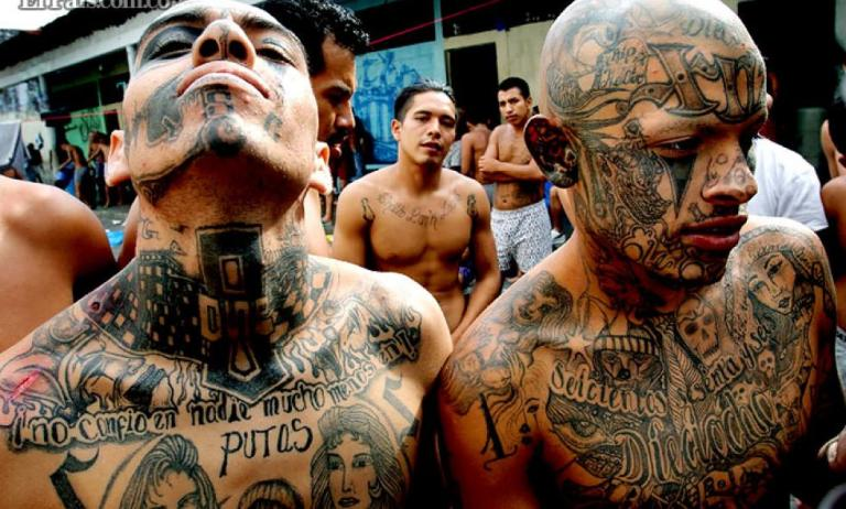 gang members in latin america